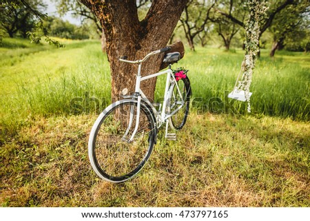 Vintage white bicycle waiting near tree and swing
