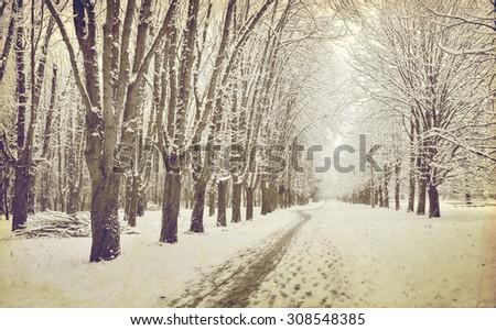 Vintage winter alley landscape. Old photo stylization. - stock photo