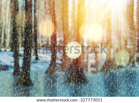 Vintage winter background. Blurry forest, sunshine, snow and bookeh effect. - stock photo