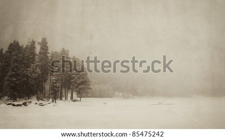 vintage winter landscape with spooky tree and frozen lake - stock photo