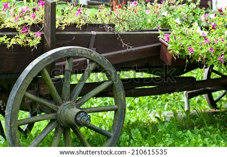 Vintage wooden wagon with color flowers