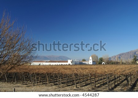 vinyard and old factory from cafayate valley - stock photo