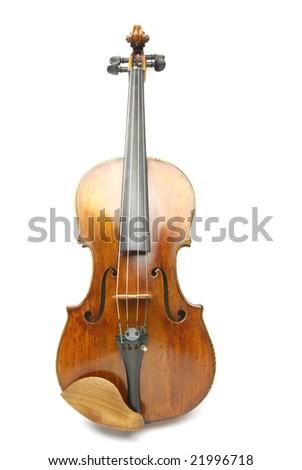 Viola - stock photo