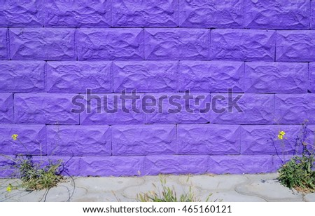 violet brick wall and the flower