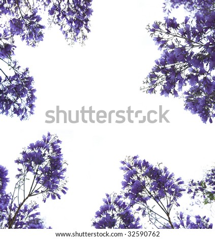 Violet flowers frame - stock photo