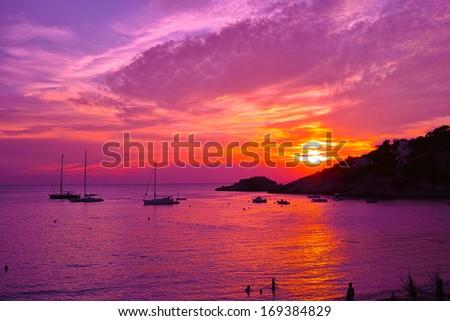 Violet sunset - stock photo