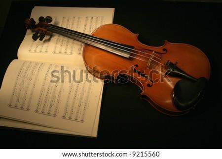 Violin - stock photo