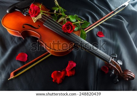 violin and rose  - stock photo