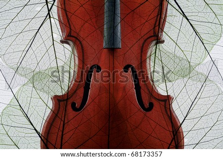 Violin covered with skeletons of autumn leaves - stock photo