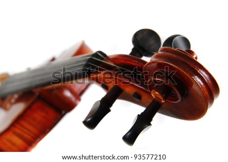 violin details isolated on the white background