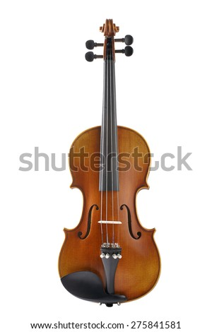 Violin front view isolated on white background - stock photo