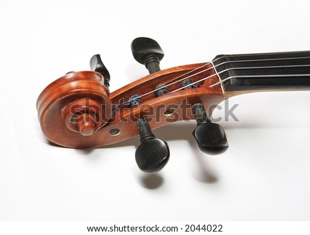Violin grif on white background. The Hard light.