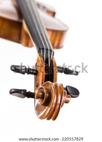 violin in vintage style on white background