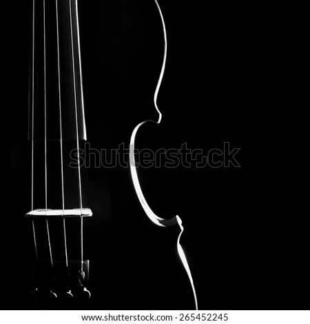 Violin music instrument of orchestra closeup isolated on black  - stock photo