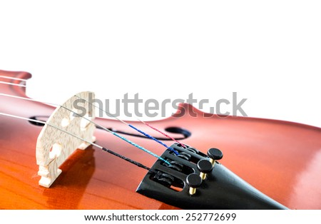 Violin on a white background - stock photo