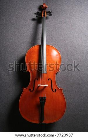 Violincello - stock photo
