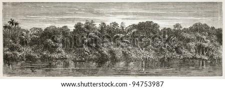 Virgin forest on Amazon river bank. Created by Riou and Laplante, published on Le Tour du Monde, Paris, 1867 - stock photo