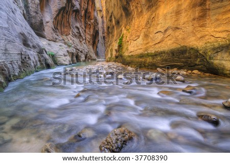 Virgin River Narrows, Zion National Park, Utah, USA