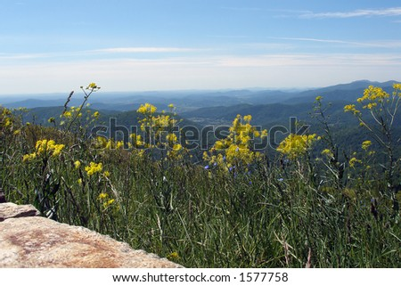 Virginia foot hills photographed from the Shenandoah National Park. - stock photo