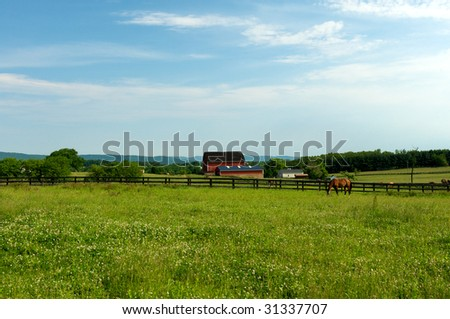 Virginia rural scene with horses,and barn - stock photo
