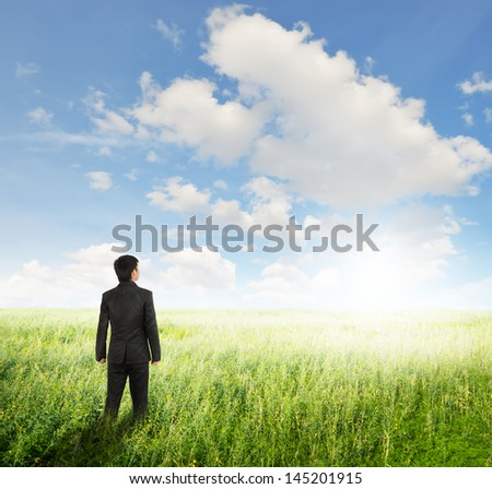 Vision business man in  fields and sun sky - stock photo