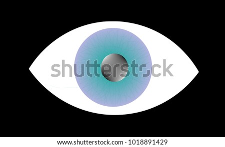 vision eye eyeball