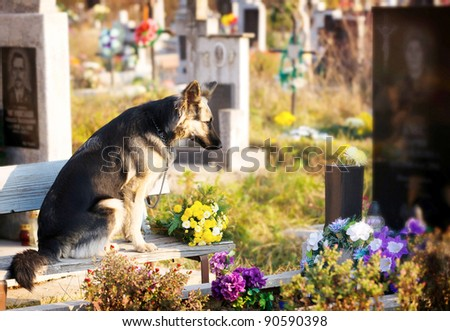 Visiting and putting on of flowers on tombs of the died relatives and friends .