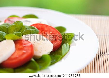 Vitamin salad with tomatoes and mozzarella cheese
