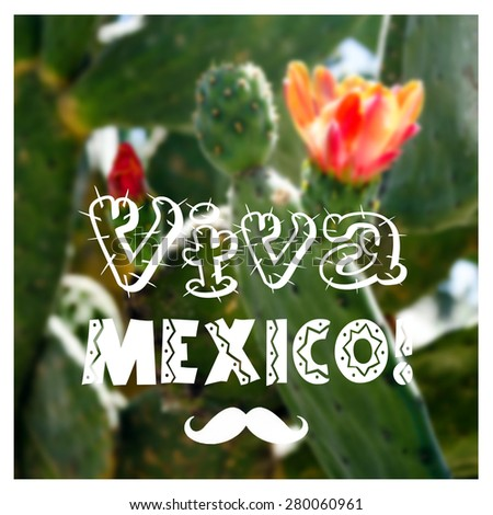 Viva Mexico text on blurred colorful background with cactus flowers. Mexican theme card - stock photo
