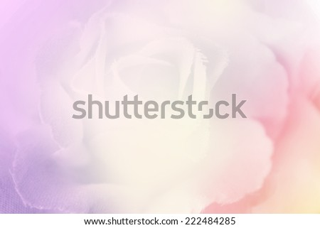 Vivid color rose in blur style for background.