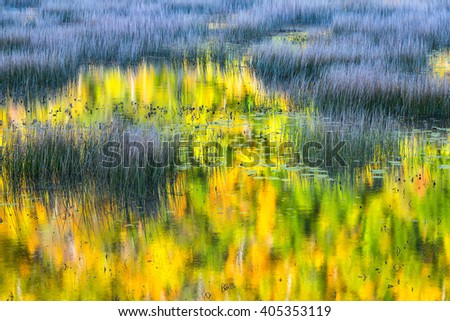 Vivid Colors of Fall Leaves Reflected in Pond - stock photo