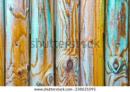 Vivid colours on wooden fence poles - stock photo