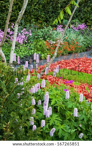 vivid flowerbed on Chelsea flower show - stock photo