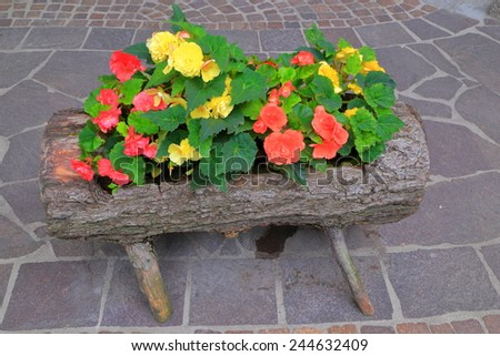 Vivid flowers in traditional wooden pot on the sidewalk - stock photo