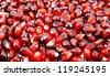 Vividly colorful background and texture of pomegranate seeds. - stock photo