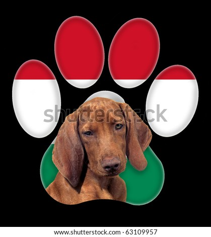 Vizsla, Dog portrait with a background of Hungary flag in paw print - stock photo