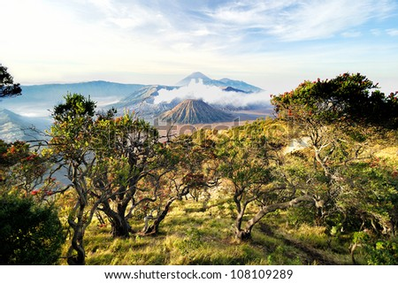 Volcanoes of Bromo National Park, Java, Indonesia . The second edition with the expanded dynamic range