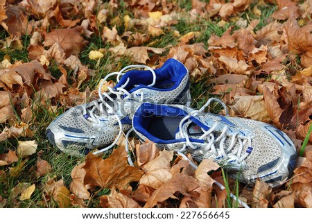 VSETIN, CZECH REPUBLIC - NOVEMBER 05, 2011: Running shoes lay in autumn leaves. - stock photo