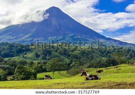 Vulcano Arenal - Horses on pasture - stock photo