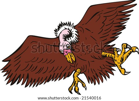 Vulture swooping down - stock photo