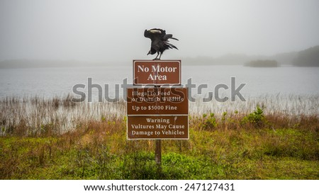 Vultures warning sign with a vulture on top of it in the Everglades National Park, Florida - stock photo