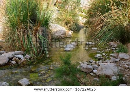 Wadi David, En Gedi Nature Reserve - stock photo