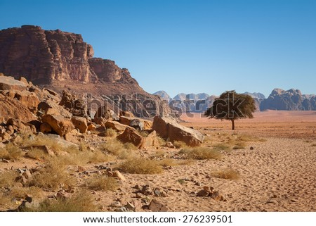 Wadi Rum also known as The Valley of the Moon. Jordan desert - stock photo