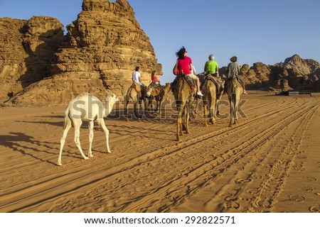 WADI RUM, JORDAN - APRIL 04, 2014: Unidentified tourists riding camels in the desert in Wadi Rum, Jordan. This desert is famous because of Lawrence of Arabia movie. - stock photo