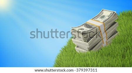 Wads of dollars lying on a grass under blue sky - stock photo