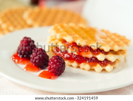 Waffle with berries - stock photo
