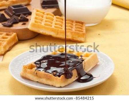 Waffles on melted chocolate - stock photo
