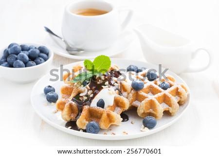 waffles with fresh blueberries, cream and chocolate sauce, horizontal - stock photo