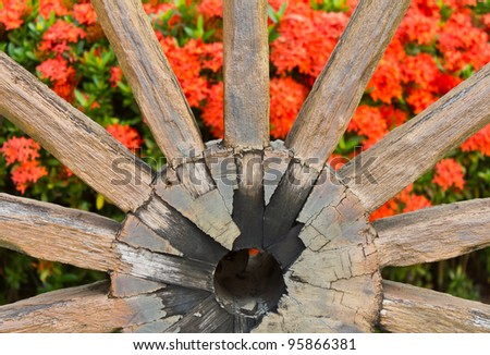 Wagon wheels ix ora. Old Wagon wheels and ix ora put the garden to relax. - stock photo