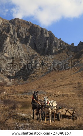 Wagon with two horses in front of rocky mountains.Location:Trascau Mountains,Romania. - stock photo